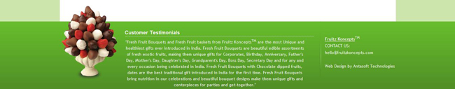 Fruite Koncept Footer