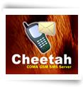 Cheetah SMS Server